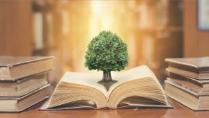לפרוץ את תחומי המחקר, הידע וההוראה- סדרת הרצאות
