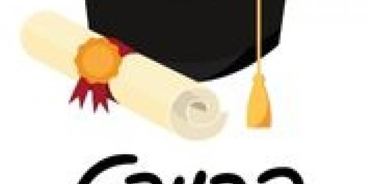 התכנית לתרבות צרפת