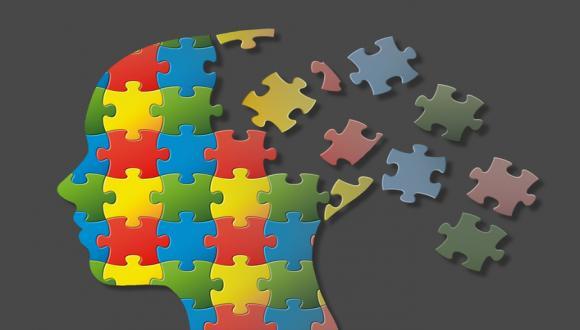 תכניות מיוחדות - מדעי המוח
