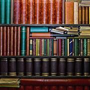 סגל אקדמי ותחומי מחקר